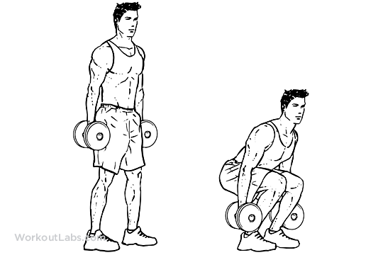 Dumbbell_Squat.png